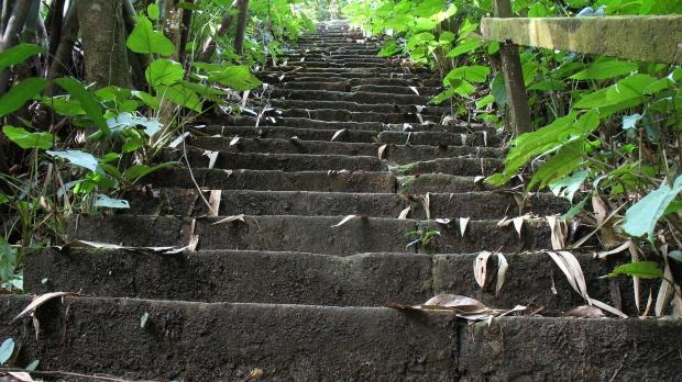 Скалила