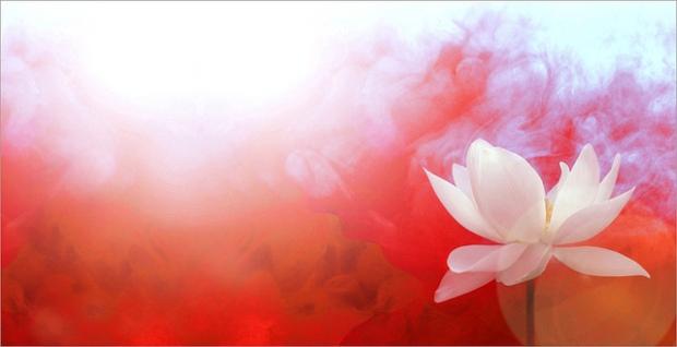 Почетни часови по јога - Февруарски уписи