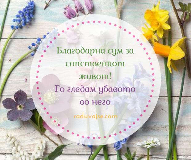 Денеска радоста е мојот компас(4)