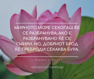 The Nature of Yoga(18)